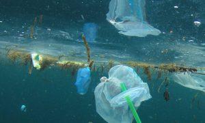 smeće more zagađenje