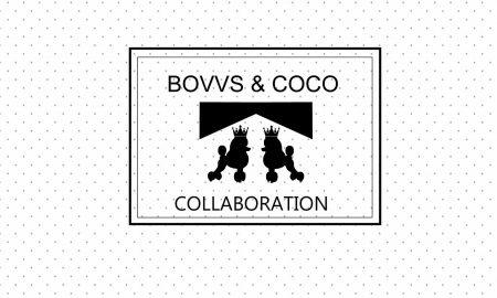 VIZUAL BOVVS I COCO 3 (1)