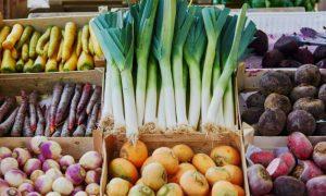 eko bio zeleni hrana